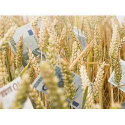 Перспективы развития агрострахования в Украине