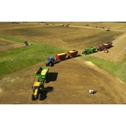 В Украине завершена уборка ранних зерновых - Минагропрод